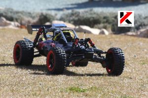 Gas Buggy RC Car