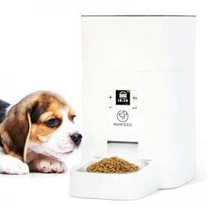دستگاه پت فیدر و یک سگ قهوه ای رنگ