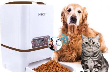 دستگاه پت فیدر و یک سگ قهوه ای و یک گربه
